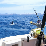 The 3 Best Sport Fishing Destinations in Central America