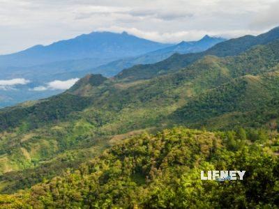 Climb the Barú Volcano