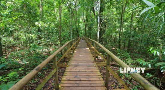 Manuel Antonio National Park Trails